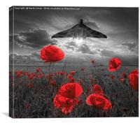 Delta Lady over the Poppies, Canvas Print