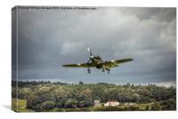 Hawker Hurricane Mk IIc PZ865, Canvas Print
