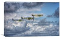 Battle of Britain Flypast at Goodwood, Canvas Print