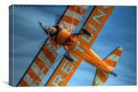 Breitling Stearman Wingwalker, Canvas Print
