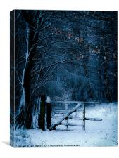 The Gate, Canvas Print