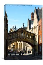 Oxford Sighs over College Lane, Canvas Print