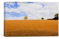 Not A Lone Tree, Canvas Print