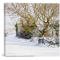 Snow In Mylor Bridge, Canvas Print
