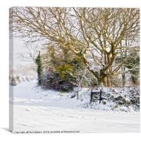 Snow In Mylor Bridge, Canvas Print