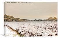Carnon Valley in Winter, Canvas Print