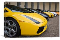 Lambo Line Up, Canvas Print