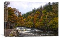 Dundaff Linn in Autumn, Canvas Print