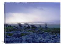 Limestone Paving, Cumbria, Canvas Print