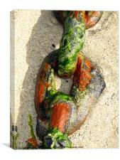 Chain Link coloured, on beach, Canvas Print