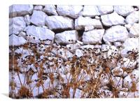 White wall, Greek Island, Canvas Print