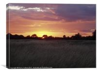 Sunset over fields, Canvas Print