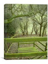 Green Stairway, Canvas Print