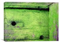 Mossy timber, Canvas Print