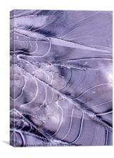 Frozen pathway, Crinkle Crags, Cumbria, Canvas Print