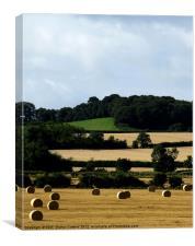 Hay Bales Bedfordshire 2, Canvas Print