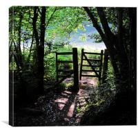 Footpath gateway Dartmoor