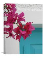 Bougainvillaea, Greek Island, Canvas Print