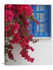 Deep Red Bougainvillaea Greece, Canvas Print
