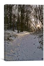 Snowy Winter Walk, Canvas Print