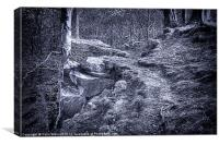 The Rugged Path, Canvas Print