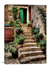 Courtyard Steps, Canvas Print