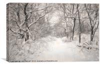 Snowy Walk, Canvas Print