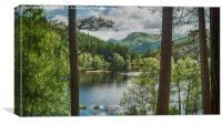 The Lochan, Canvas Print