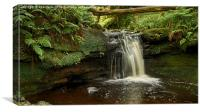 Fairlie Waterfall