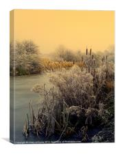 FROST, Canvas Print
