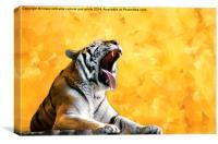 Golden Tiger Moment, Canvas Print