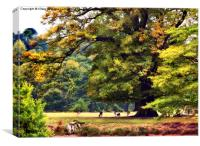 Landscape, Under A Big Oak In Autumn, Canvas Print