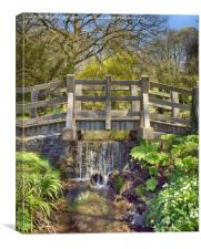 Bridge Over The Stream, Canvas Print