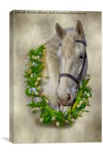Horse 1, Canvas Print