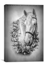 Horse 3, Canvas Print