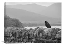 Black & White at Loch Lomand