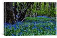 BLUE GLADE, Canvas Print