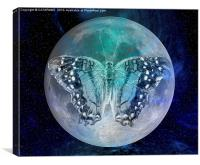 MOON BUTTERFLY, Canvas Print