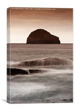 Gull Rock, Canvas Print