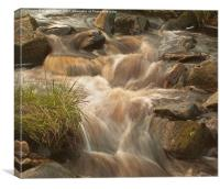 Fast Water, Canvas Print