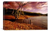 Silent Valley, Canvas Print