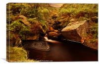 The Swirl Pool, Canvas Print