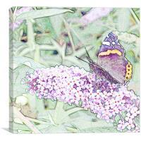 Lilac Flutters, Canvas Print
