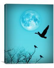 Night Flight, Canvas Print