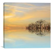 Heavenly branches, Canvas Print
