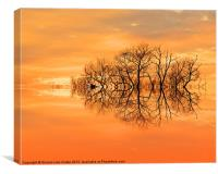 Sunset in March, Canvas Print