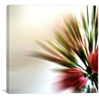 Radial Roses, Canvas Print