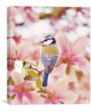 Blossom buddies, Canvas Print