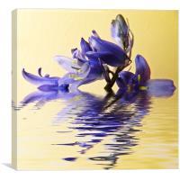Blue ripples, Canvas Print