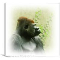 Ape, Canvas Print